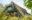Eigentumswohnung-Ahrenshoop